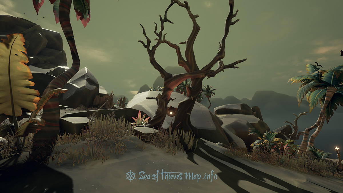 Sea Of Thieves Map - At the North East entwined trees prove your worth, 6 paces South East, are you ready to break the earth? - Riddle Step