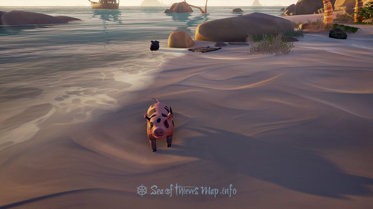 Sea Of Thieves Map - Paradise Spring - Pigs